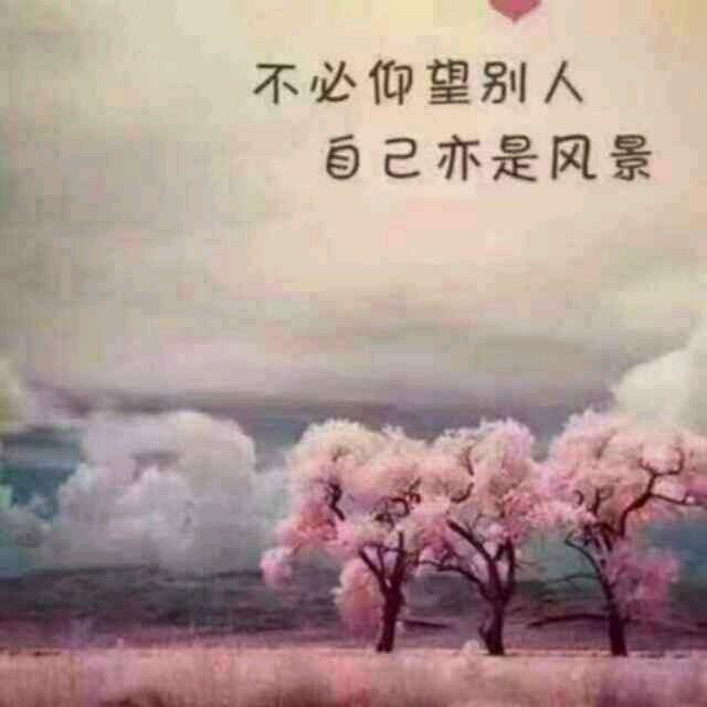 等风等雨我等你(热度:42)由追梦翻唱,原唱歌手花树