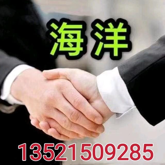 飞鸟与射手由李大官人演唱(ag娱乐平台网站|官网:门丽)