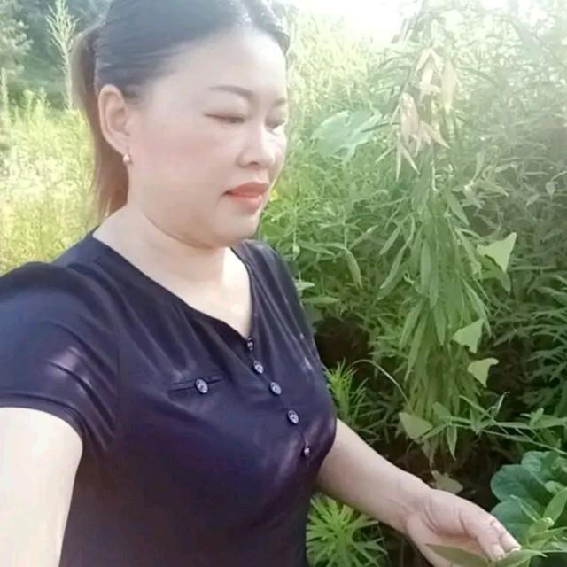 我在等风也在等你(热度:72)由忆亭:笑颜如花翻唱,原唱歌手赵真/康又萁
