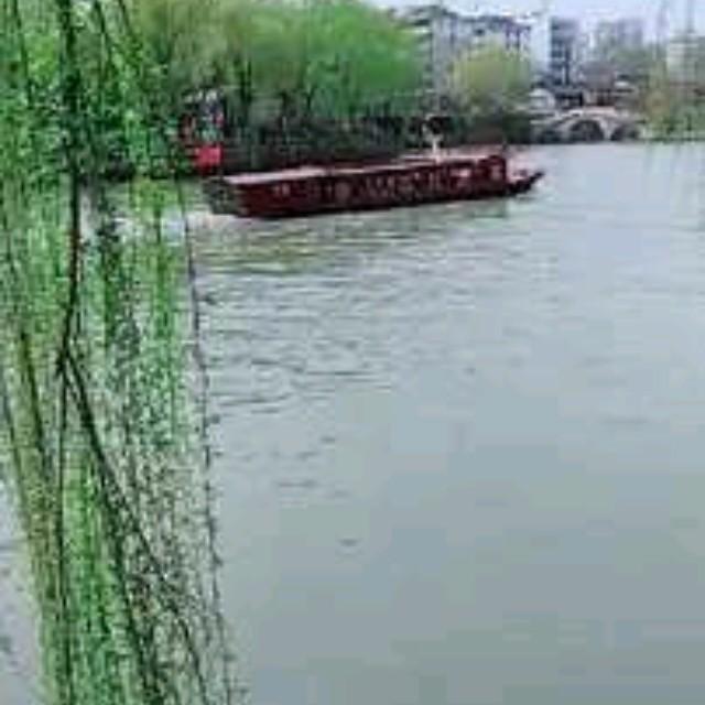 纳西情歌由花开富贵演唱(ag官网平台|HOME:陈思思)