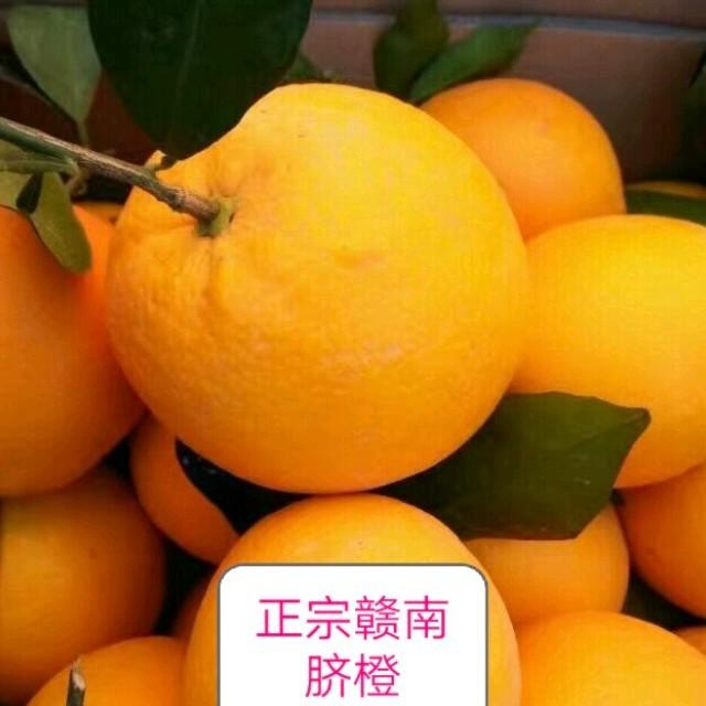 网情追忆在线听(原唱是孙艳),居安乐业赣南橙演唱点播:10次